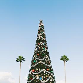 Discover 2018's Ugly Christmas Rashie Design