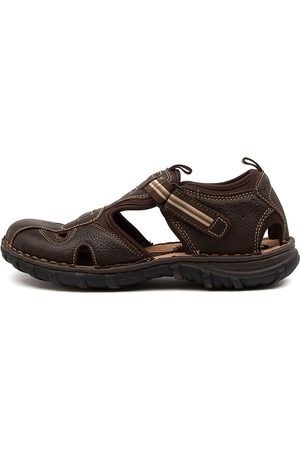 Wild Rhino Men Sandals - Pitt Wr Dark Sandals Mens Shoes Casual Sandals Flat Sandals