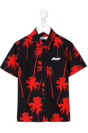Msgm Palm tree print shirt