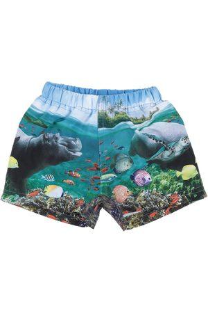 Molo Swim trunks