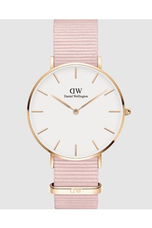 Daniel Wellington Petite Rosewater 36mm - Watches (Rose ) Petite Rosewater 36mm