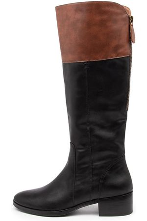 I LOVE BILLY Torri Il Whiskey Boots Womens Shoes Casual Long Boots