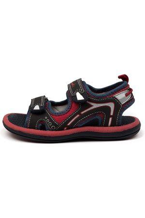 Clarks Boys Sandals - Fear Ii Tot Ck Navy Sandals Boys Shoes Casual Sandals Flat Sandals