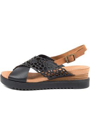Django & Juliette Women Sandals - Auston Dj Navy Dk Tan Navy Sandals Womens Shoes Casual Sandals Flat Sandals
