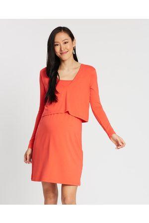 Isabella Oliver Women Evening Dresses - Webber Nursing Dress - Dresses (Coral Rose) Webber Nursing Dress