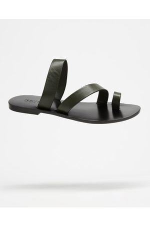 SENSO Clyde I - Sandals (Fern) Clyde I