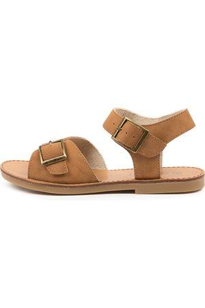 Walnut Melbourne Ryder Sandal Jnr Wa Tan Sandals Girls Shoes Casual Sandals Flat Sandals