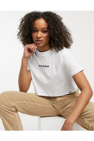Dickies Central 1922 cropped t-shirt in white