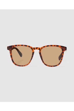 LOCAL SUPPLY Syd Sunglasses Tort