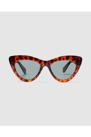 LOCAL SUPPLY Sunglasses - Ams Sunglasses Polished Tort