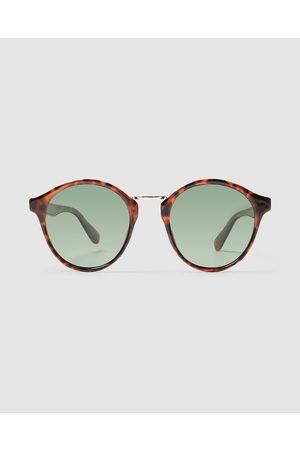 LOCAL SUPPLY Lax Sunglasses Polished Tort