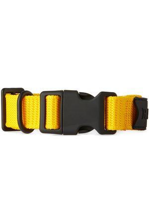 Scarves - RAINS Webbing Collar