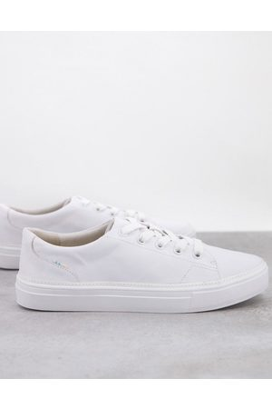 Toms Alex sneakers in white leather