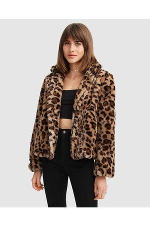 Belle & Bloom Women Winter Jackets - Last Call Leopard Faux Fur Jacket - Coats & Jackets Last Call Leopard Faux Fur Jacket
