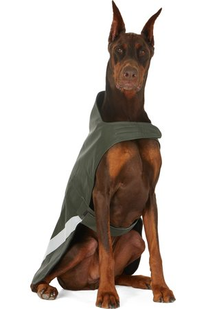 Stutterheim Raincoats - SSENSE Exclusive Khaki Lightweight Dog Raincoat