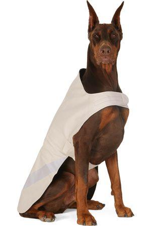 Stutterheim SSENSE Exclusive Off- Lightweight Dog Raincoat