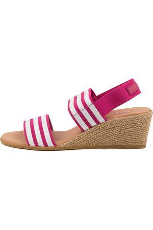 Django & Juliette Bloomy Dj Fuchsia & Fuchsia Sandals Womens Shoes Casual Heeled Sandals