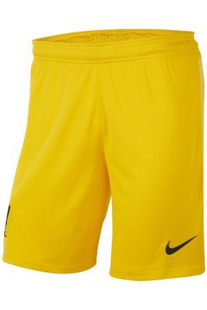 Nike Liverpool F.C. 2021/22 Stadium Goalkeeper Men's Football Shorts