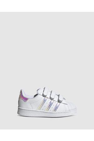 adidas Originals Baby Sneakers - Superstar Foundation Self Fastening Infant - Sneakers ( / Hologram) Superstar Foundation Self-Fastening Infant