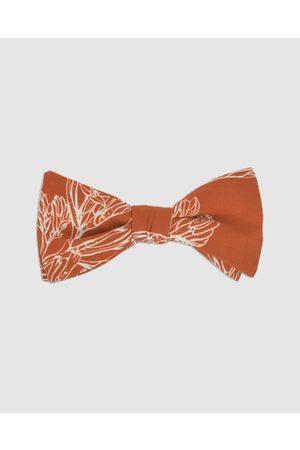 Peggy and Finn Kangaroo Paw Bow Tie - Ties & Cufflinks Kangaroo Paw Bow Tie