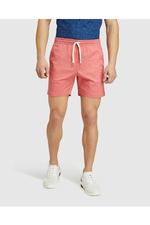 Oxford Toby Stretch Organic Cotton Shorts - Chino Shorts Toby Stretch Organic Cotton Shorts