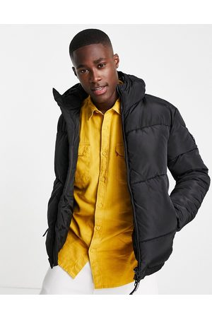 Marshall Artist Paninaro padded jacket in