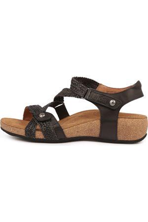 1b771cebcbe Taos Trulie Sandals Womens Shoes Comfort Sandals Flat Sandals