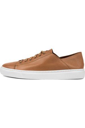 Mollini Oskher Dk Tan Sneakers Womens Shoes Casual Casual Sneakers