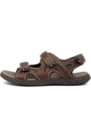 Colorado Denim Darwin Cf Dark Sandals Mens Shoes Casual Sandals Flat Sandals